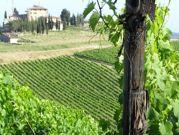 tb_tuscany