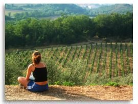 watching the vineyards on our tuscany bike trip